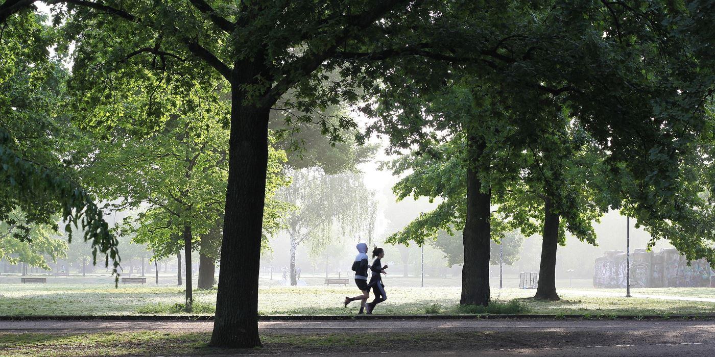 Co daje aktywność ruchowa co daje, zalety aktywności fizycznej